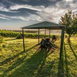 Gazebo da Giardino - Migliori Prodotti, Opinioni e Prezzi